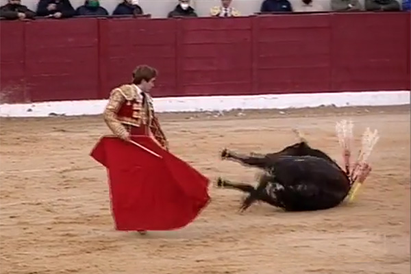 El Sr Marqués de Quintanar, tiene un problema…