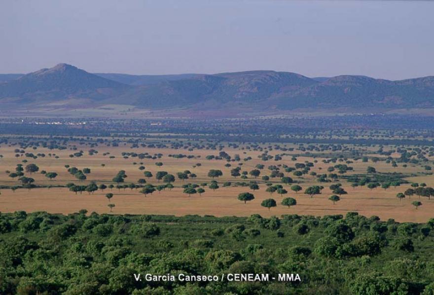 Guadaqu caba eros un paisaje de ra a y sierra for Clausula suelo wikipedia