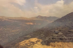 Controlado un incendio forestal en Chiloeches